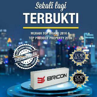 Bricon2