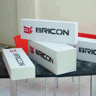 Bricon1